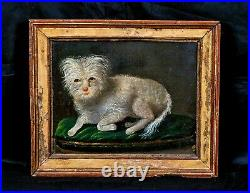 17th 18th Century English Portrait Of A White Terrier Dog Antique Oil Painting